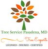 Tree Service Experts Pasadena MD