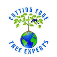 Businesses of Any and All Types Cutting Edge Tree Experts in Ormond Beach FL