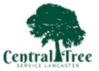 Businesses of Any and All Types Central Tree Service Lancaster in Lancaster
