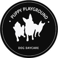 Businesses of Any and All Types Puppy Play Ground in Zetland NSW