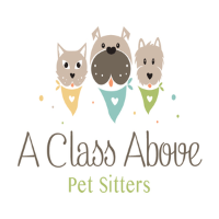 A Class Above Pet Sitters